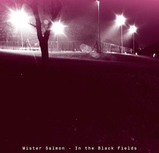 Mister Salmon - In The Black Fields [mp3]