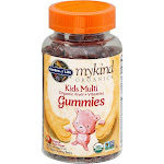 Garden of Life MyKind Organics Kids Multi, Organic Fruit + Vitamins, Gummy Bears, Organic Fruit Flavor - 120 gummies