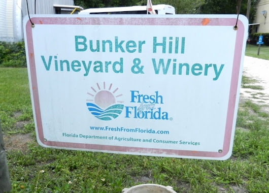 Bunker Hill Vineyard Tour and Wine Tasting