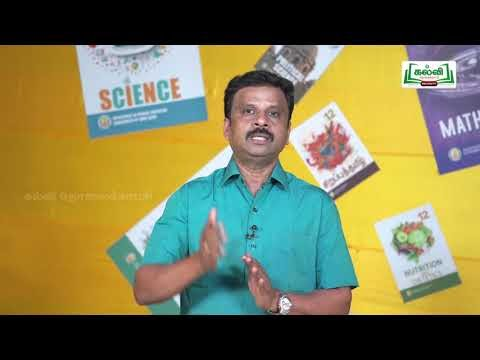 முப்பரிமாணம் Std 11 TM Physics Veppam Matrum Veppa  Iyakkaviyal Part 6 Kalvi TV