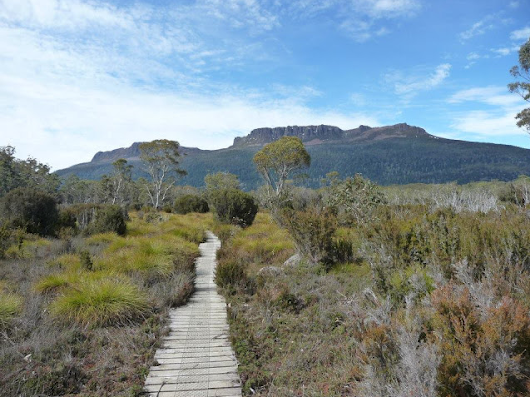 Trekking Tasmania: The Overland Track (Part 1) – Bright Lights of America