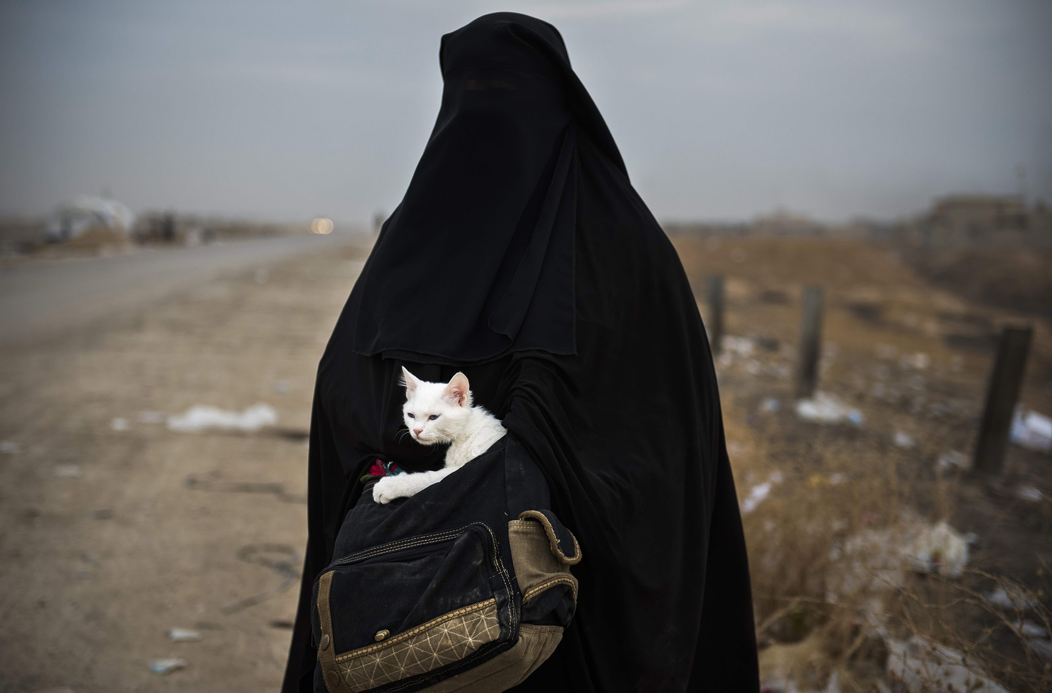 A displaced Iraqi woman holds her cat, Lulu, as she waits for transport in the Iraqi Kurdish checkpoint village of Shaqouli, about 35 kilometres east of Mosul, on November 10, 2016, after she fled her home with her children in the eastern Intisar neighbourhood of the embattled city to take refuge at a camp in Arbil.  Iraqi forces are taking part in an operation to recapture Iraq's second city Mosul from Islamic State (IS) group jihadists. / AFP PHOTO / Odd ANDERSENODD ANDERSEN/AFP/Getty Images