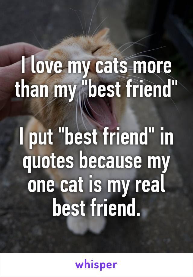 I Love My Cats More Than My Best Friend I Put Best Friend In