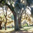 Savannah, Georgia Accessible Travel Tips & Attractions |