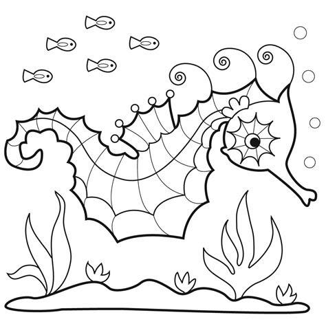 marisa straccia sea horses  bunnycup