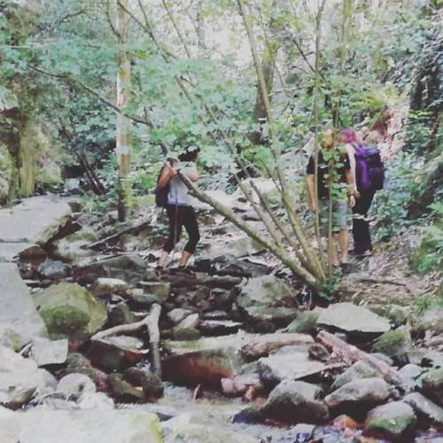 Excursión al #Montseny #Espaisingle #Espaisinglesenderismo