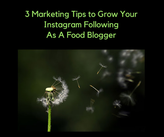 3 Marketing Tips to Grow Your Instagram Following As A Food Blogger - Dianne Jacob, Will Write For Food
