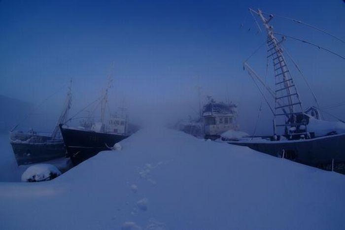 Зимовка кораблей (15 фото)