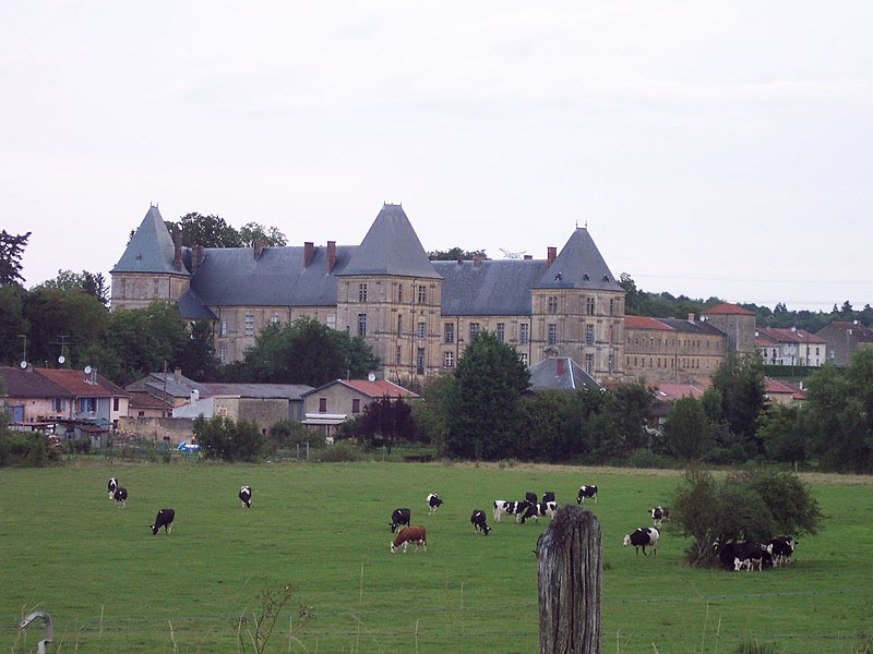Fichier:Château et village de Louppy sur Loison.JPG