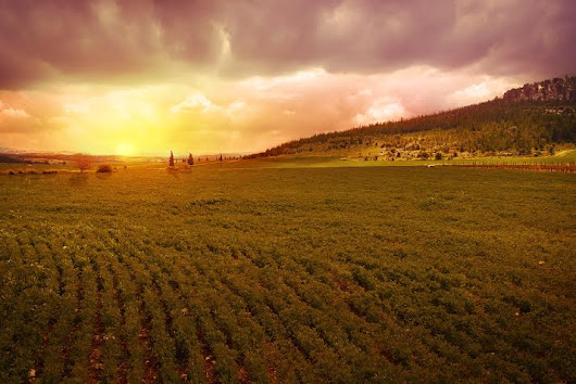 15 photos of Israel that will blow your mind