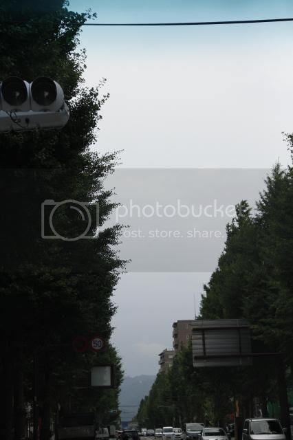 photo _MG_3457_zps936f3561.jpg