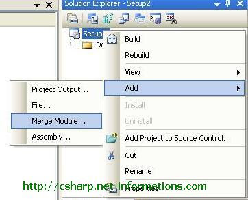 crystal-reports-merge-module