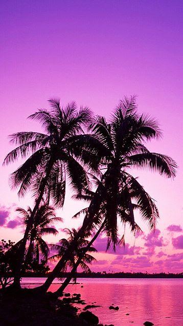 すべての花の画像 心に強く訴える壁紙 ハワイ 海 夕日