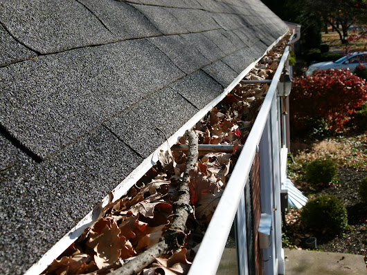 Why Cleaning Gutters is a Top Priority this Spring - GutterTalk Blog