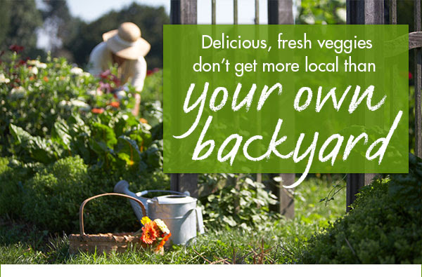 Delicious, fresh veggies don't get more local than your own backyard