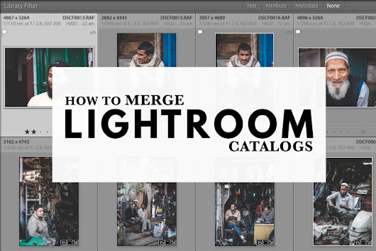 How To Merge Lightroom Catalogs | The Creative Photographer