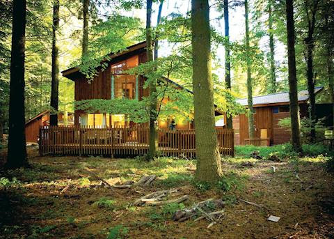 Forest of Dean Log Cabin, Canoe, Lodge Retreats, Holiday Rental