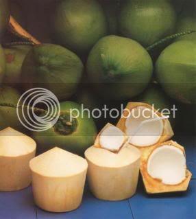 gambar kelapa muda