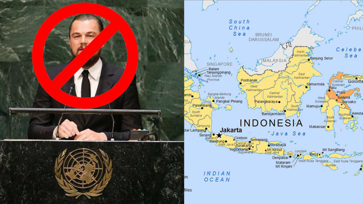 Leonardo DiCaprios Environmental Efforts Have Really Pissed Off the Indonesian Government  Complex