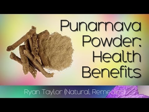 Punarnava Powder: Benefits and Uses