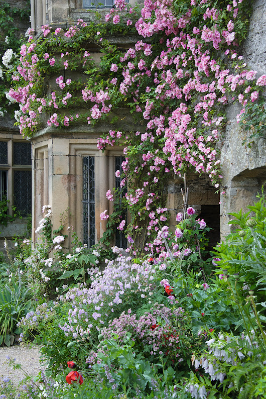 Magical Gardens by Arne Maynard | Architectural Digest