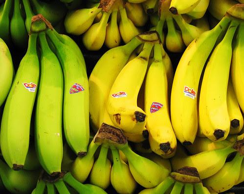 Bananas contain a small amount of prebiotics.