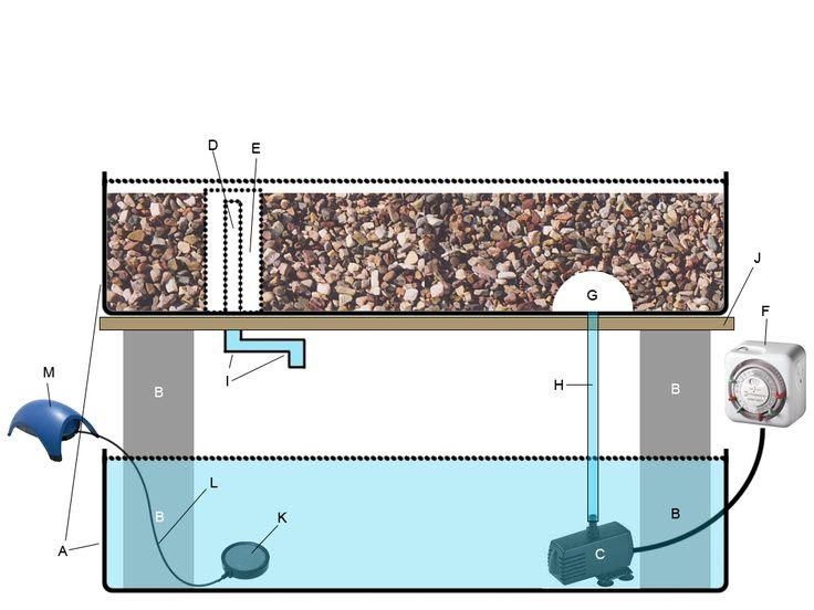 Aquaponics Gardening System Plans