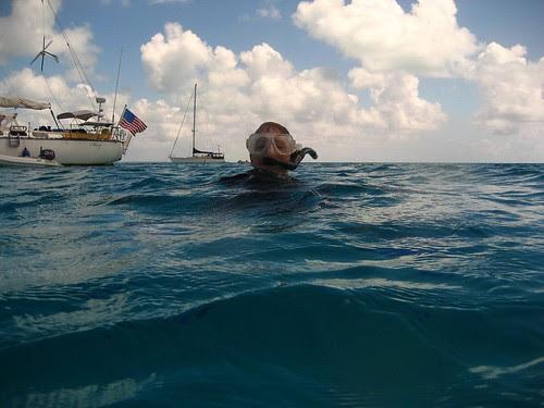 Snorkel Cocos