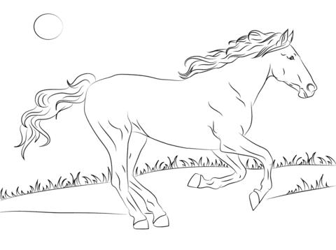 Dibujo De Hermoso Caballo Mustang Para Colorear Dibujos Para