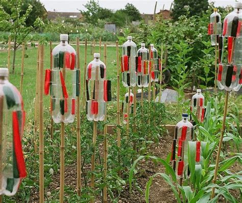 13 best images about How To Scare Birds Away From The Garden on Pinterest   Gardens, Peppermint