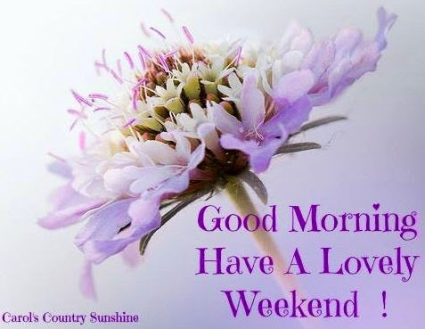 Good Morning Have A Lovely Weekend Quote Pictures Photos And