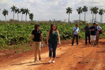 Miembros de la Coalición Agrícola Estadounidense por Cuba, integrada por 30 empresas agroalimentarias, visitan la cooperativa Primero de Mayo, en Güira de Melena, en la occidental provincia cubana de Artemisa.