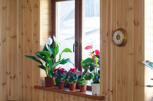 3 Ways to Improve Indoor Air Quality