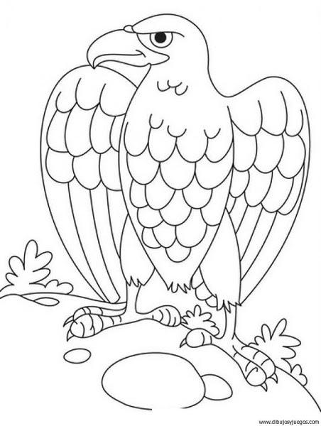 Dibujo De Aguila 003 Dibujos Y Juegos Para Pintar Y Colorear