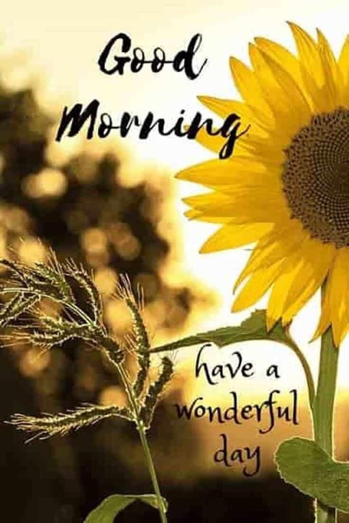 Pleasurable Morning Quotes Photo