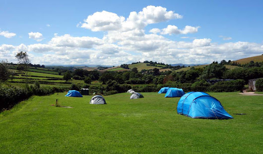 Treacle Valley | Camping | Campsite near Torquay, Torbay, Devon.