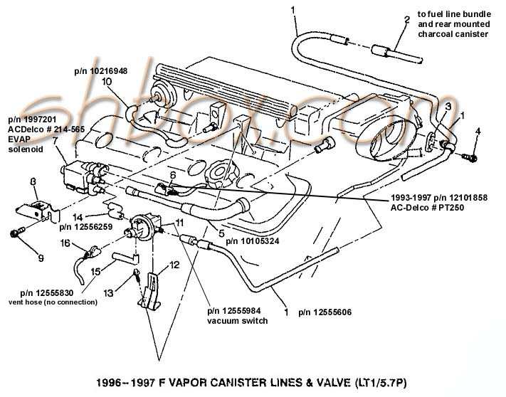 1996 Camaro Engine Diagram Wiring Diagrams Short Sense Short Sense Massimocariello It