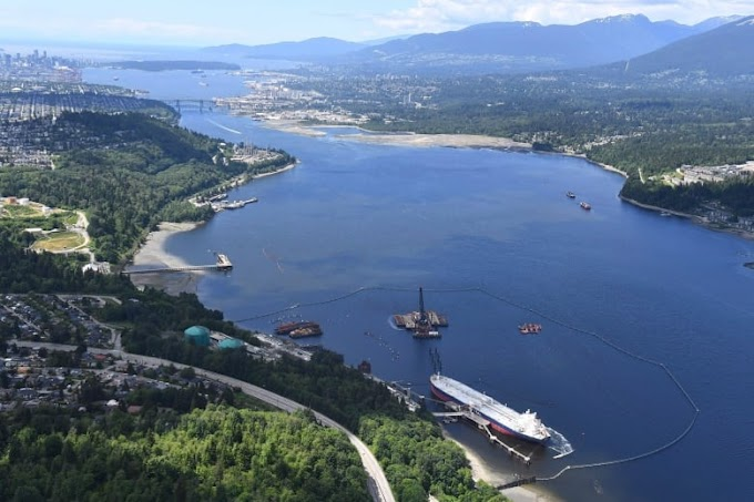 Trans Mountain pipeline expansion will lead to $11.9B in losses for Canada, study says