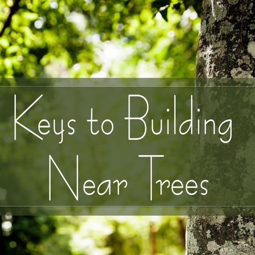 Keys to Building Near Trees by Trees Are Key