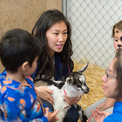 State of Care: See it up close at the CSU Veterinary Teaching Hospital Open House - SOURCE