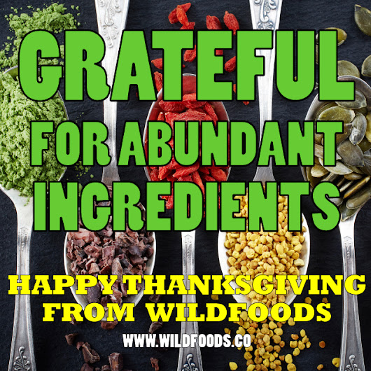 Happy Thanksgiving From Wild Foods (Cyber Monday Announcement)