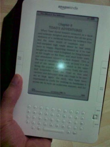 My Kindle experience - RamblingLibrarian