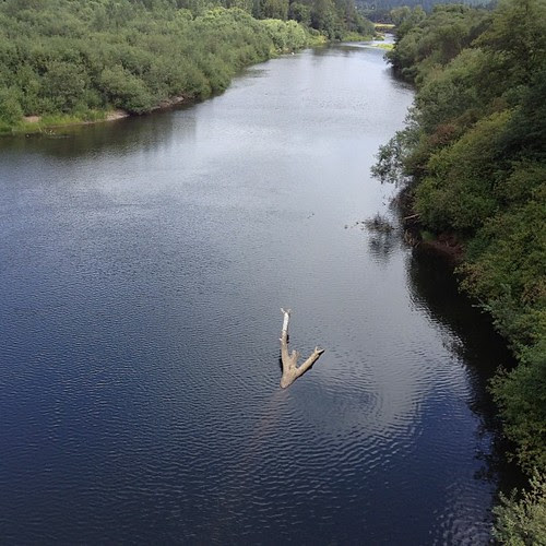 Singing tmbg on the Chehalis river #touring