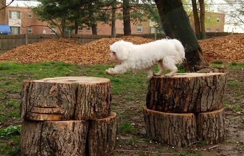 I *think* I can reach it!