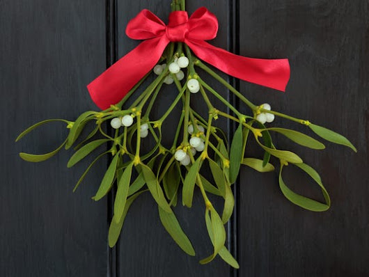What's the deal with mistletoe?
