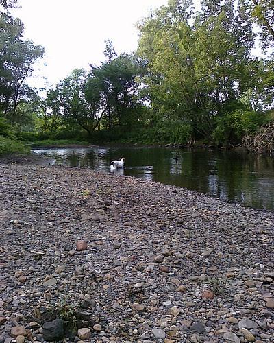 Caney At Kayaderosseras Creek