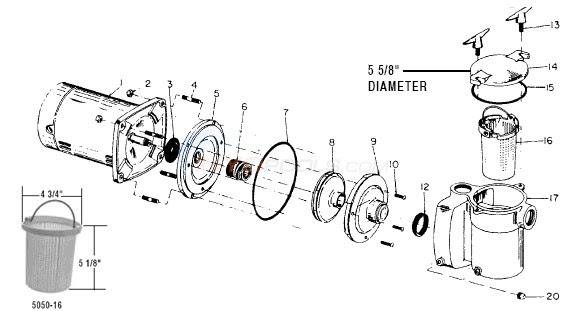 31 Pool Pump Parts Diagram