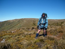Above Totara spur on main Ruahine range.