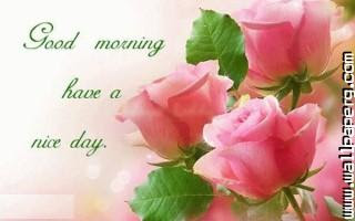 Download Happy Morning Have A Nice Day Good Night Wallpaper Mobile