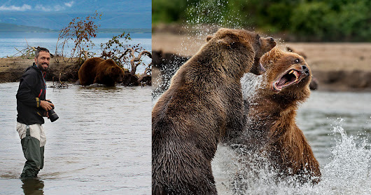 Wild and Pure: Photographing Wildlife in Kamchatka